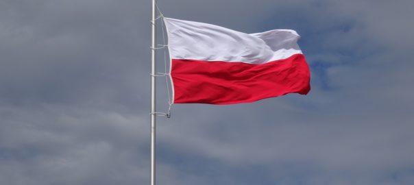 święto flagi w przedszkolu Sowia 5